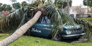 Are there Public Adjusters for cars in South Florida?
